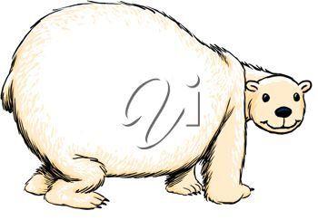 free bear xxx