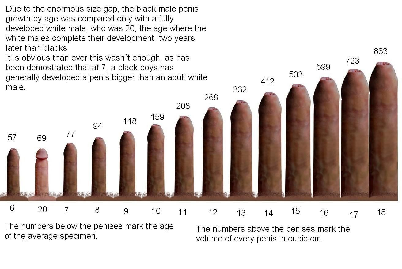 Penis size pornstar Top 20: